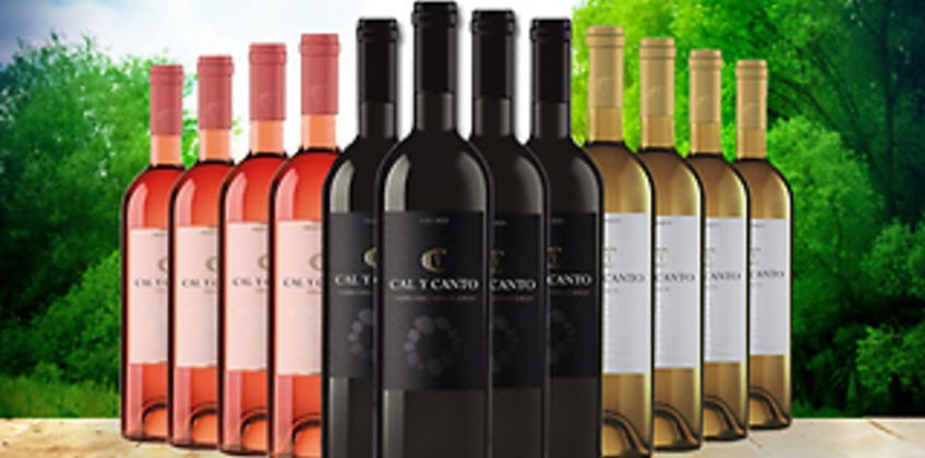 12 Bottles of Award-Winning Cal Y Canto Castilla Wine - White, Red or Rosé from GoGroopie