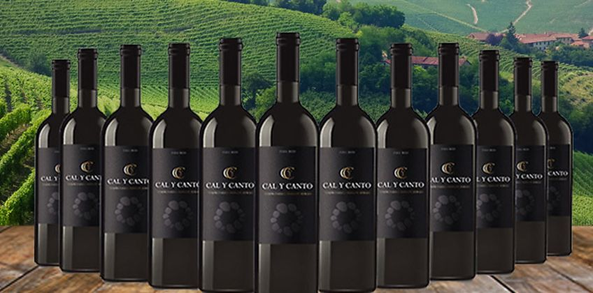 12 Bottles of Award-Winning Cal Y Canto Castilla Red Wine from GoGroopie
