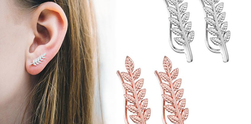 £3.99 instead of £11.99 for a phillip jones leaf climber earrings - choose from two colours from Silver Supermarket Ltd - save 67% from Wowcher