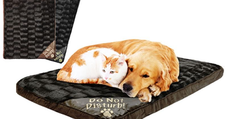 £9.99 instead of £29.99 (from Fusion Online) for a foam pet bed - choose from two colours and save 67% from Wowcher