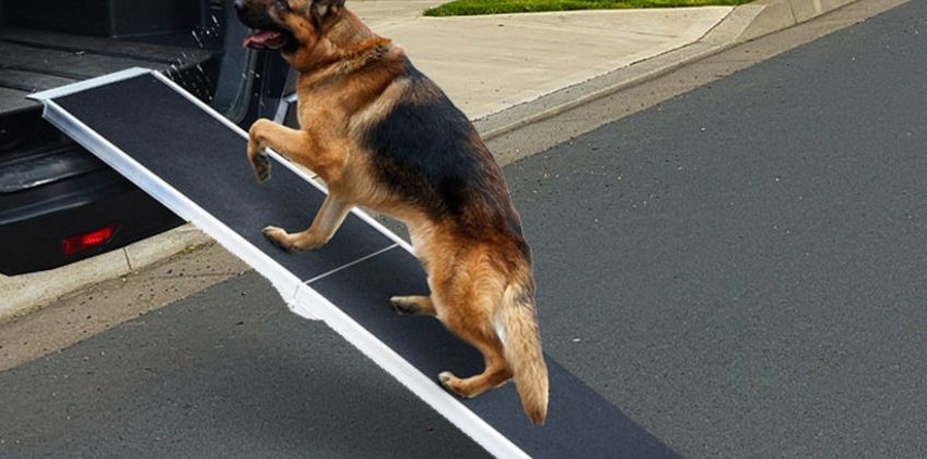 £59 (from Direct Xpress) for a 4ft dog-friendly car ramp from Wowcher