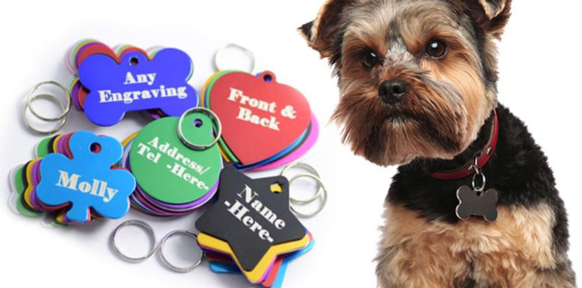 £2.99 instead of £15 (from Engraving Brothers) for a personalised aluminium pet jewellery tag with two-sided engraving - choose from 10 designs in five colours and save 80% from Wowcher