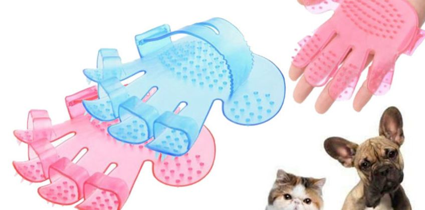£2.99 (from Yello Goods) for a pet massage bath brush – remove loose hairs from your pet from Wowcher