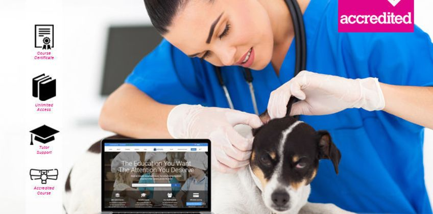 £15 instead of £199 for an online veterinary nursing course from Harley Oxford - save 92% from Wowcher