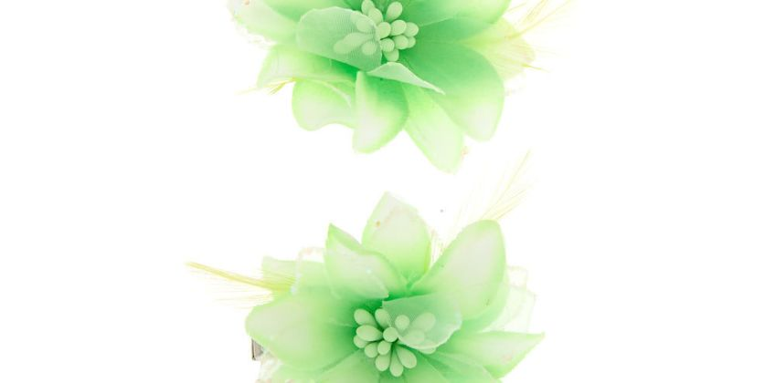 Go to Product: Glitter Lily Flower Hair Clips - Green, 2 Pack from Claires
