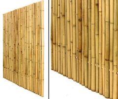 Bambuszaun, Moso gelb, starr mittels verbunden, gebleicht, 150 x 120cm, Durch. Bambusrohre 3,5- 4cm