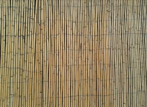 Beispielbild für Bambuszäune