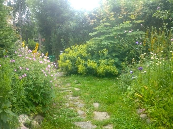 Trädgårdsterapi läker trötta själar