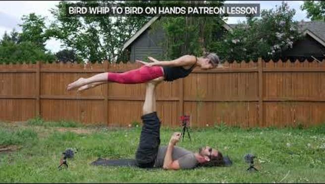 Bird Spotting: Acro yoga