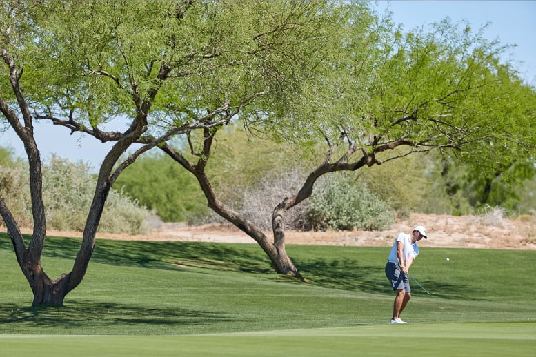 Man golfing next to trees