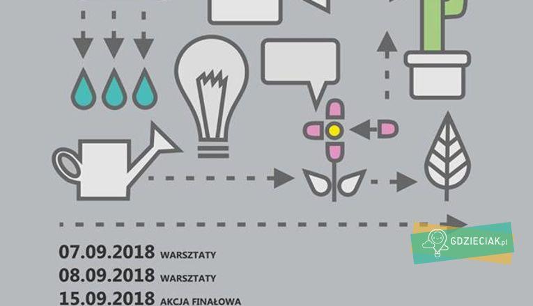 Miejska partyzantka ogrodnicza - atrakcje dla dzieci w Szczecinie