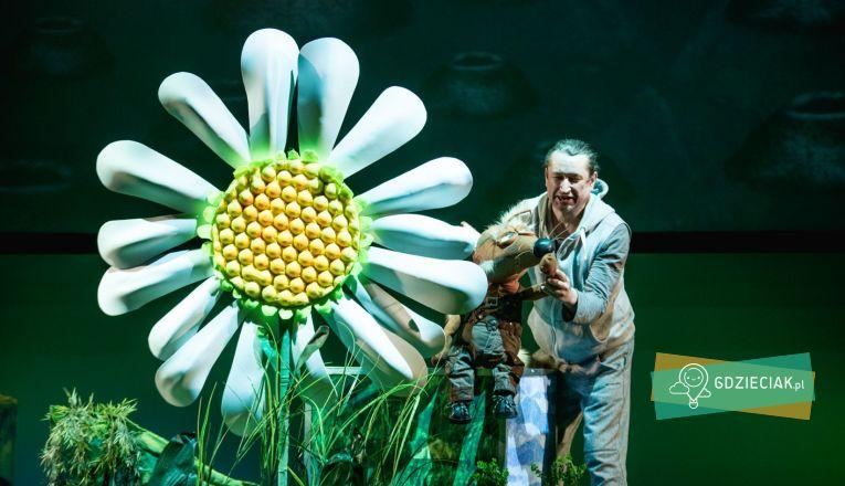 Kiedy zakwitnie Margerytka - atrakcje dla dzieci w Szczecinie