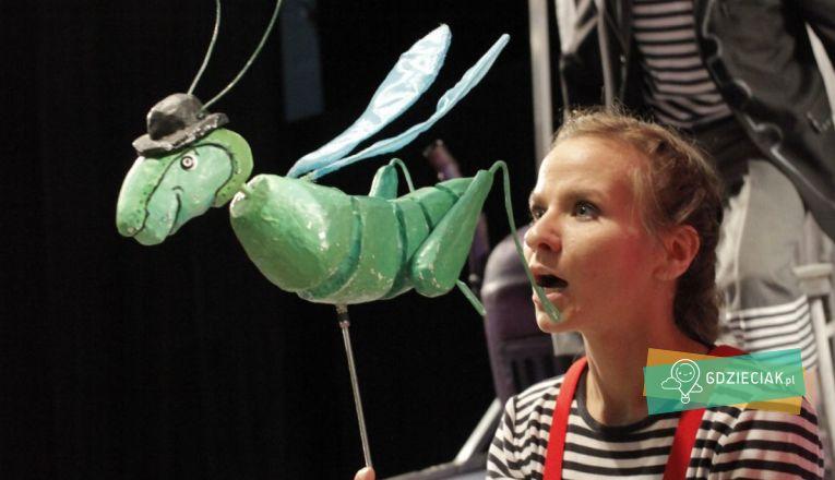 Pinokio w Pleciudze - atrakcje dla dzieci w Szczecinie