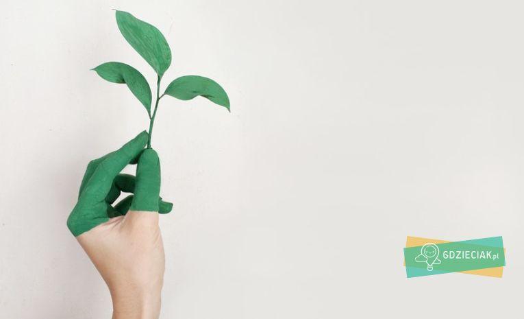 Szacecin dla dzieci: Ekopaka – ekologiczne zajęcia plastyczne w ProMedia