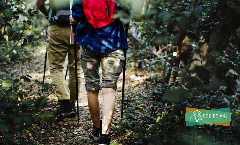 Szacecin dla dzieci: Puchar Pomorza Nordic Walking