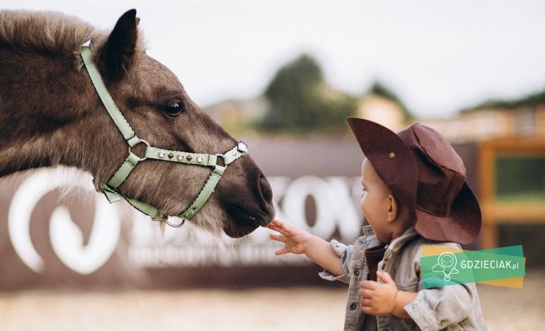 Szacecin dla dzieci: Dzień Dziecka w Stajni na Osowie