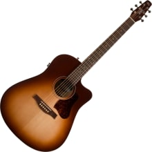 Entourage Autumn Burst Acoustic-Electric Guitar