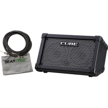 Roland CUBE Street 2-Channel Battery Powered PA Am