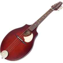 S8 (041596) Burnt Umber SG Acoustic Mandolin