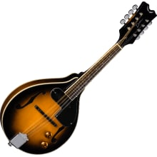 Dean TNAE MP VS Tennessee A/E Mandolin w/ Magnetic