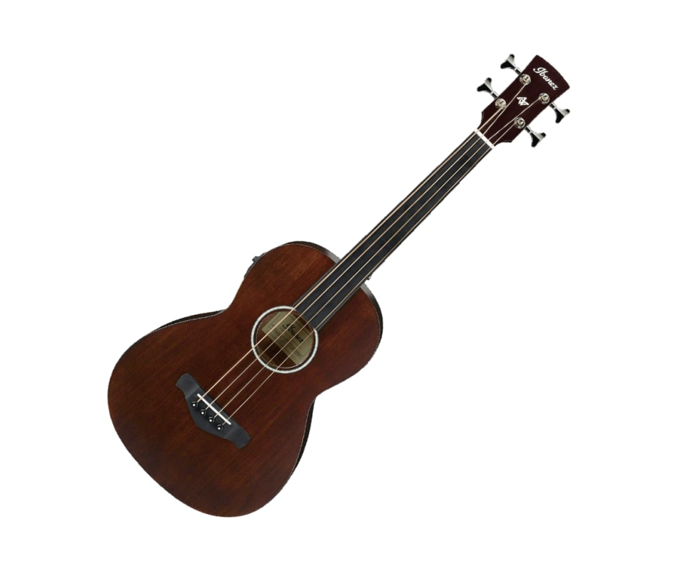 AVNB1FE BV Fretless Parlor Acoustic-Electric Bass