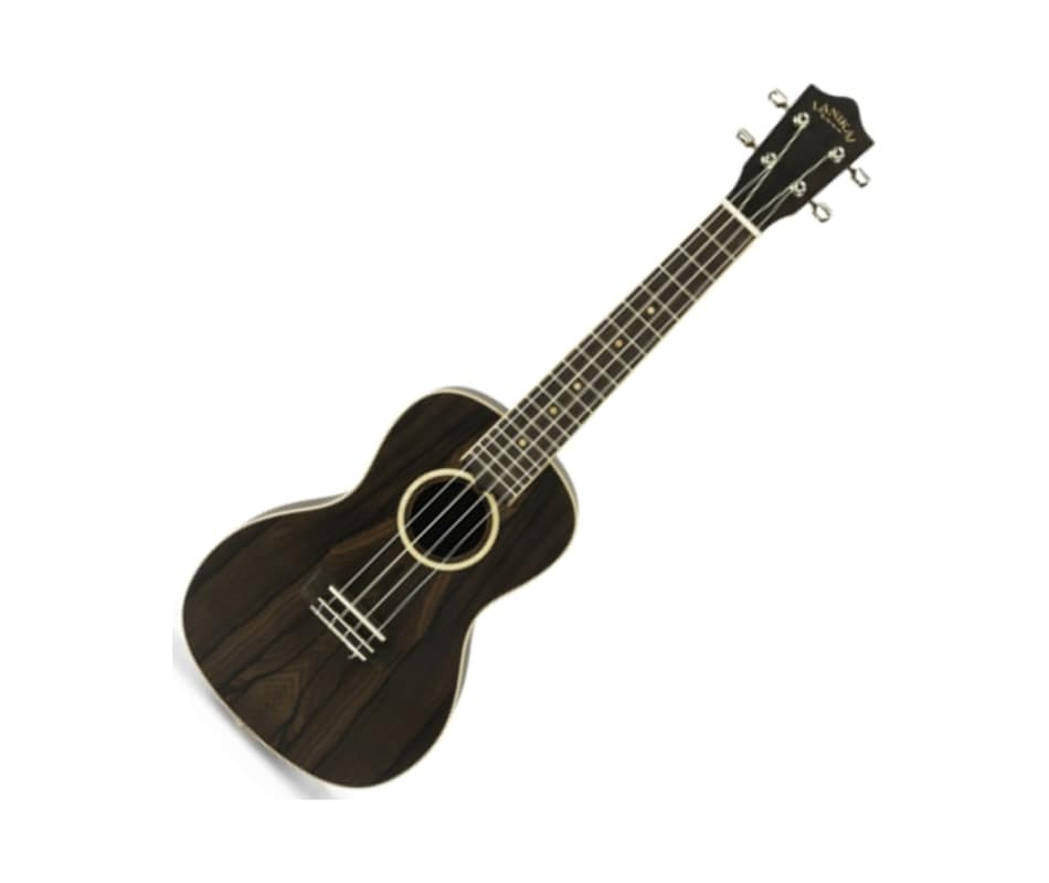 ZR-C Ziricote Concert Ukulele with Gig Bag