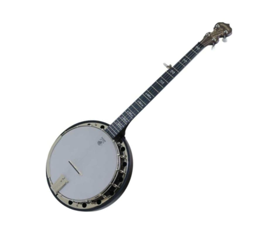 Deering A2 Artisan Goodtime Two Banjo with Resonat