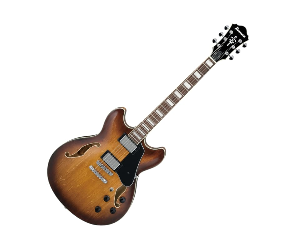 Artcore AS73 Semi-Hollow Body Electric Guitar