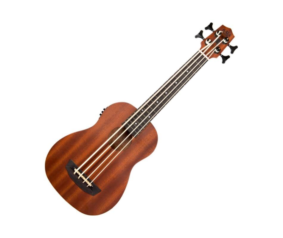 WNDR-FS Wanderer Fretted Acoustic-Electric Ubass