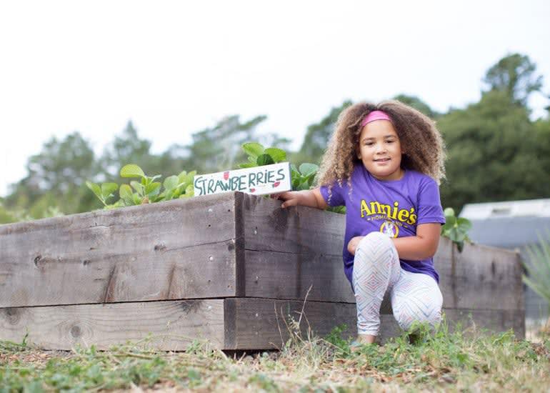 A little girl wearing a purple Annie's t-shirt, kneeling next to a garden of strawberries.