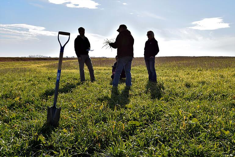 Farmers standing in a field