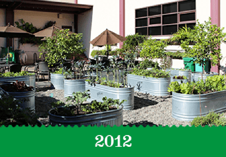 Year 2012 - The Berkeley building's container garden