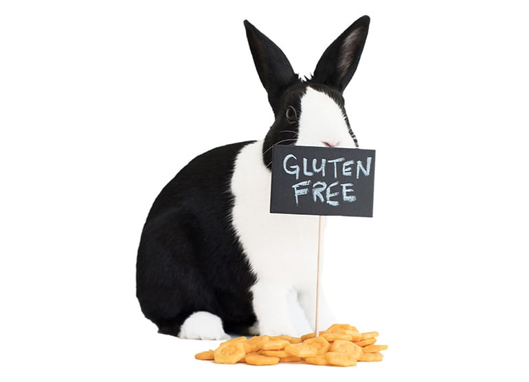 "A black and white rabbit hiding behind a sign that reads ""Gluten Free"""