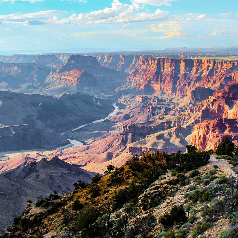Beautiful Top scenic of grand canyon national park