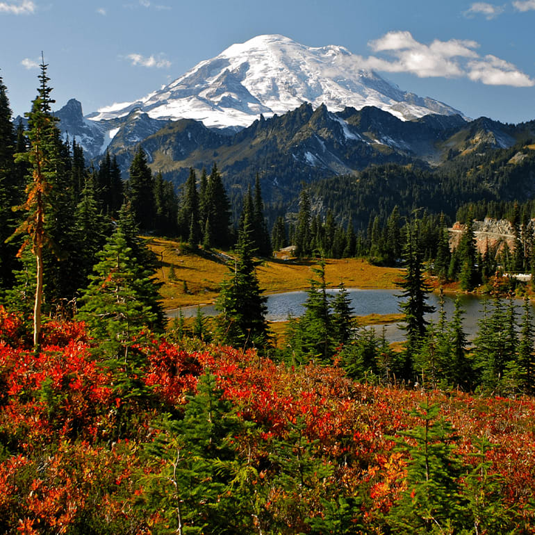 Glacier mountain in red and green Forrest