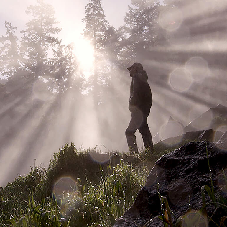 A man with cap standing in sunrise spring rays peaking through forest