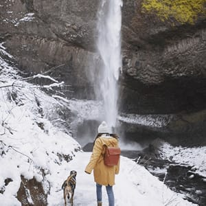A girl and dog walking on snow road towards waterfall - Link to social post