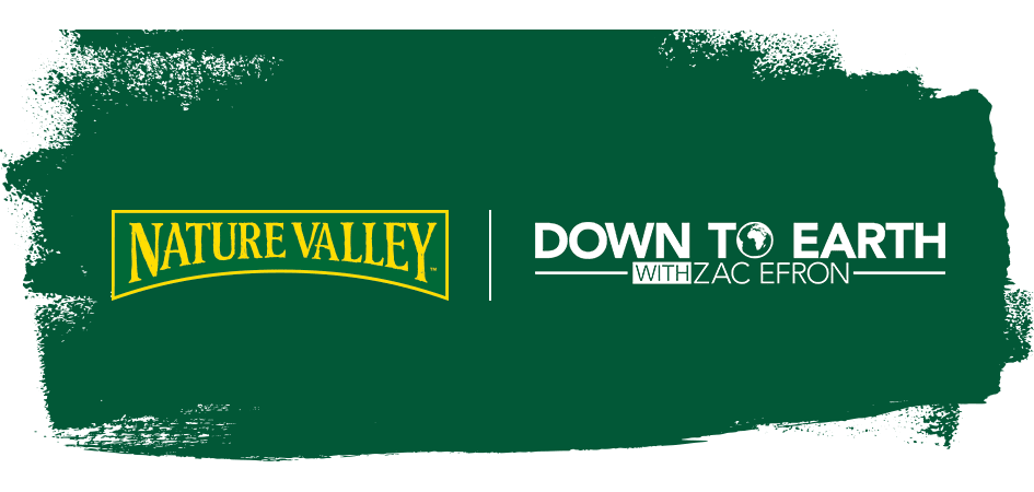 Nature Valley Logo With Down To Earth Text next to it.