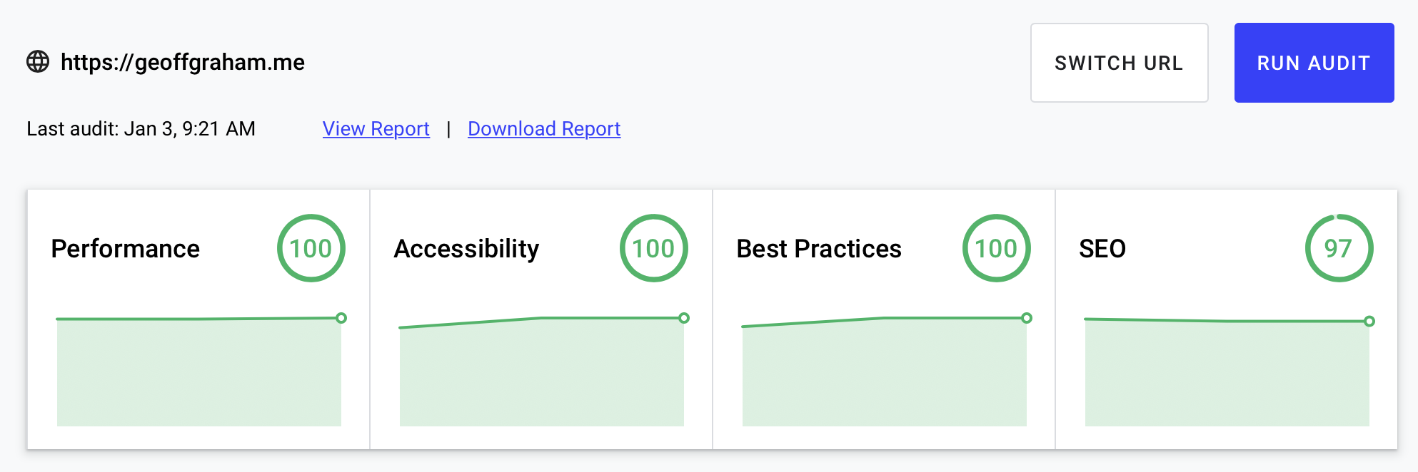 Lighthouse results showing an accessibility score of 100.