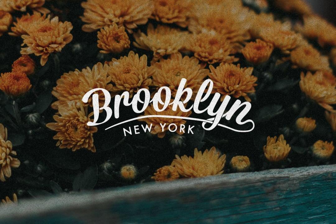 Brooklyn Logo