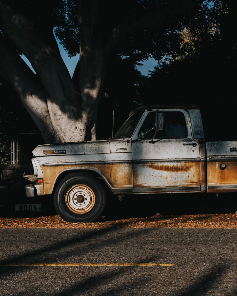 A side on view of a rusty truck sheltered by trees