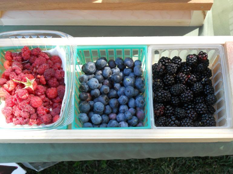 Berry Heaven, USA - A little bit of Berries
