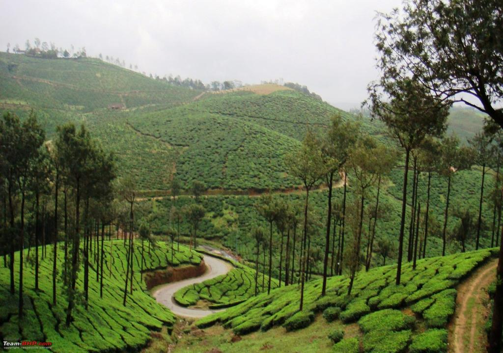 Kerala Thekkady Packages
