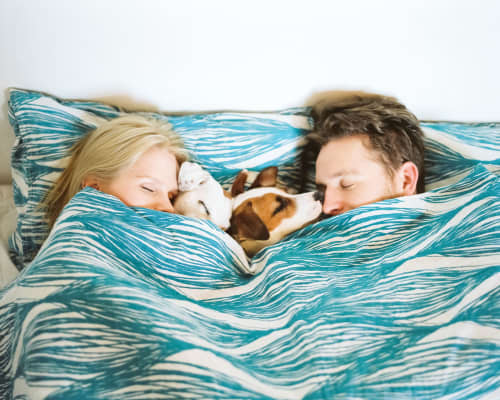 Couple sleeping in with dog