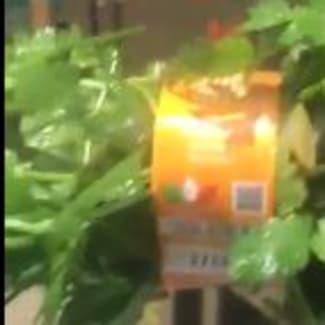 Botteleuse et étiqueteuse de légumes