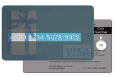 Plastic gift card balance check example