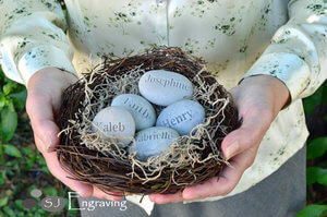 Engraved Stones In Bird Nest