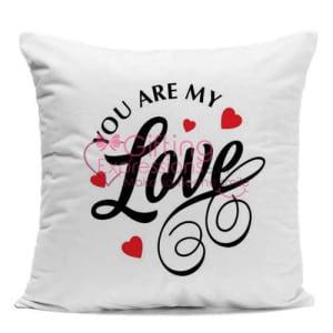 Send Love Cushion To Pakistan