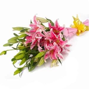 Send Pink Lilies To Pakistan