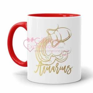 Send Aquarius Mug To Pakistan